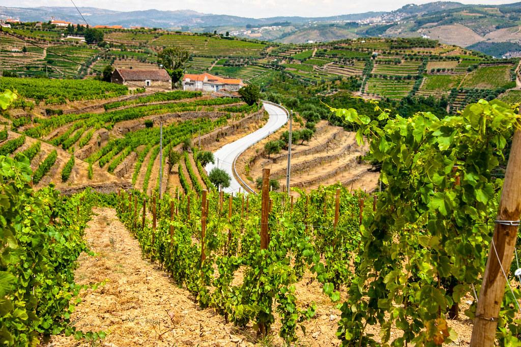 Valle del Duero, Portugal - que ver en el norte de Portugal