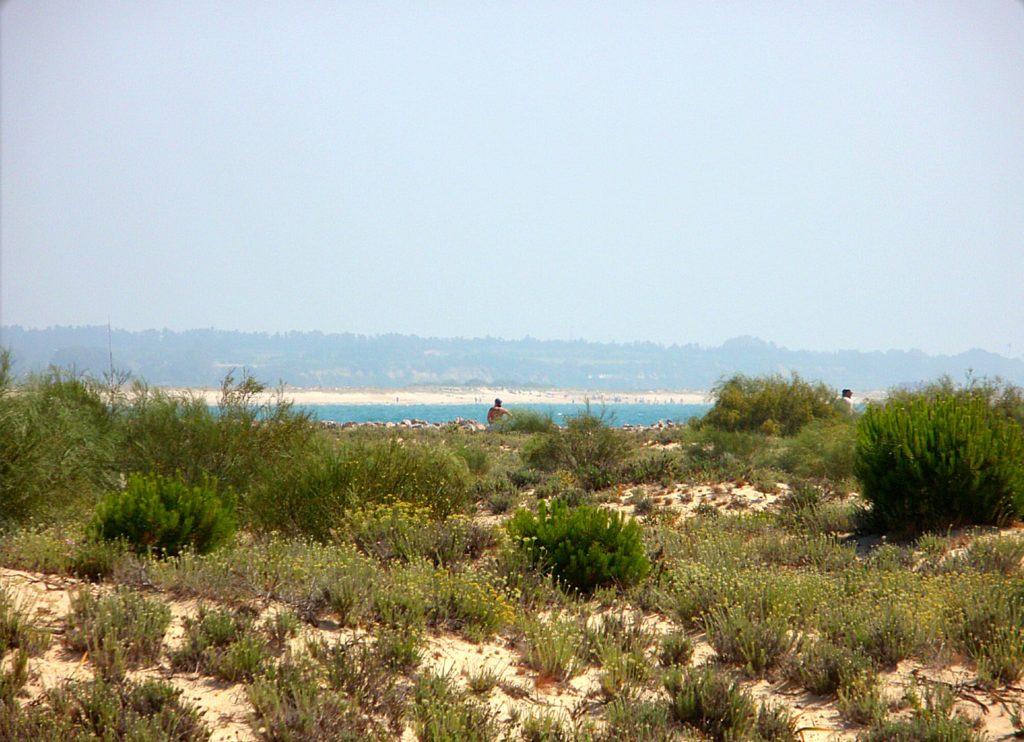 Isla de Tavira, Portugal