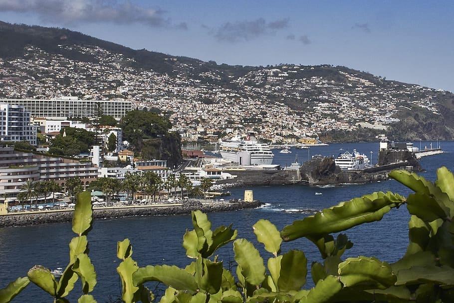 madeira-vista de la ciudad funchal-las islas más bonitas de portugal