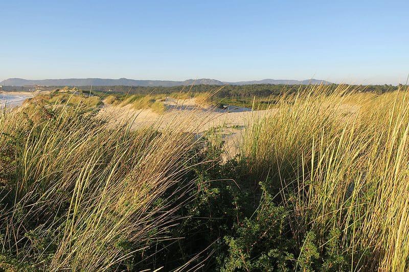 Parque Natural Litoral Norte, Los mejores parques naturales y nacionales de Portugal